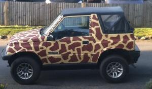 giraffe car